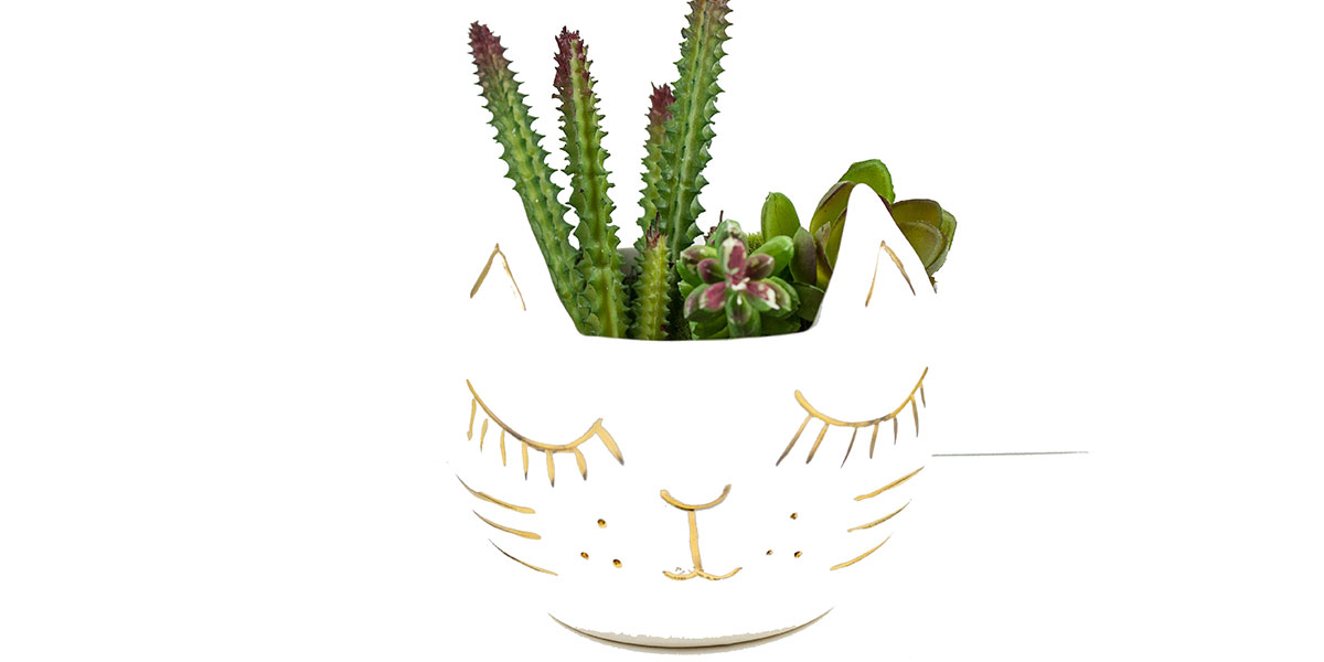The Animal Lover Holiday Gift Guide at Homespun Kitty Cat Planter